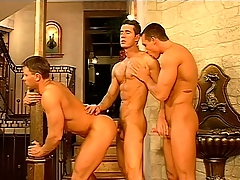Gay uppity rollers hook up and have a hot threesome give a catch palace