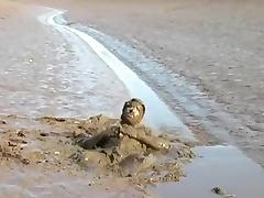 Strokin in the mud