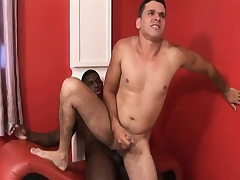 Black and white gay studs blow dick and take turns slamming it up the ass